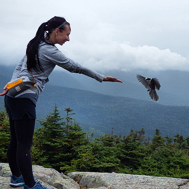 making friends with birds on mountaintop
